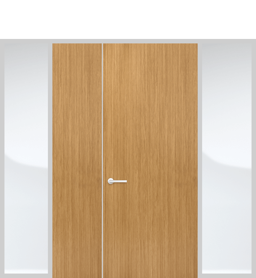 Door panel with side lights and solid panel