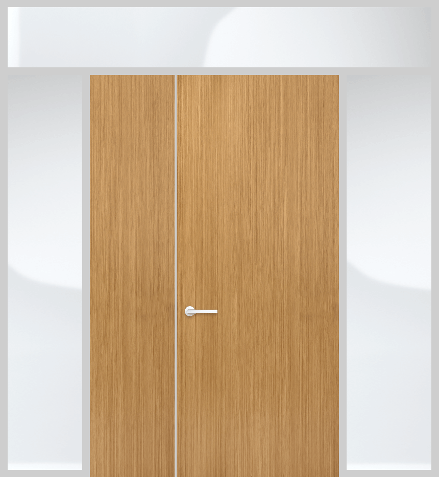 Door panel with top and side lights and solid panel