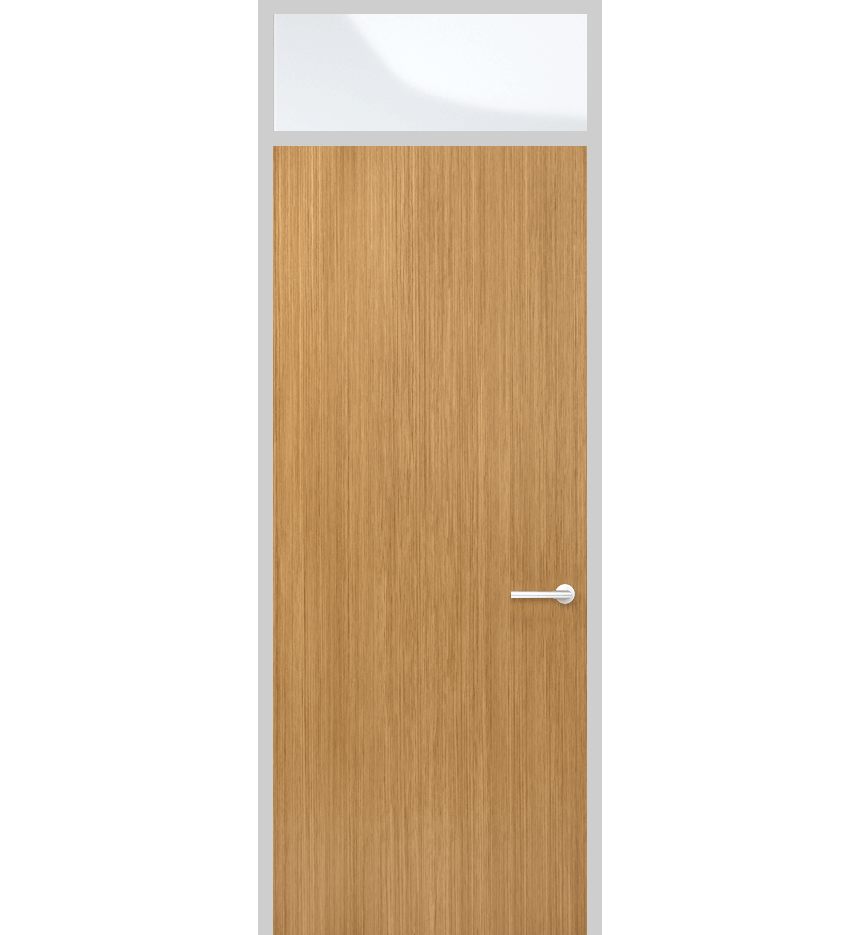 Door panel with top light and solid panel
