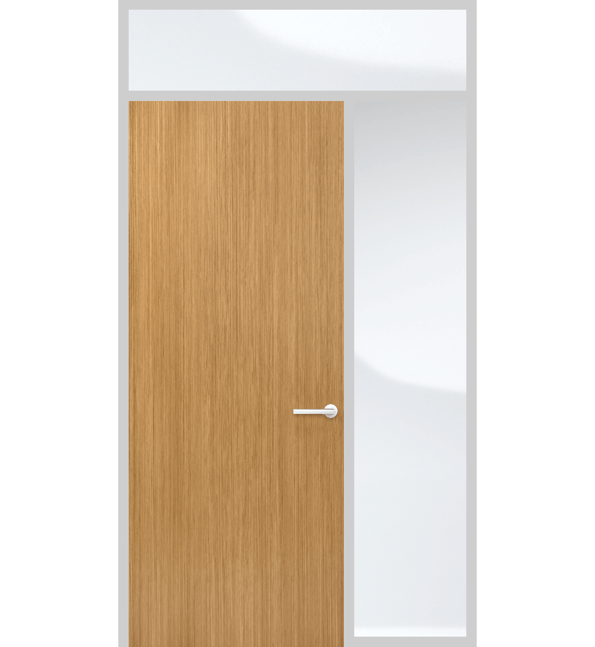 Door panel with top and side light and solid panel