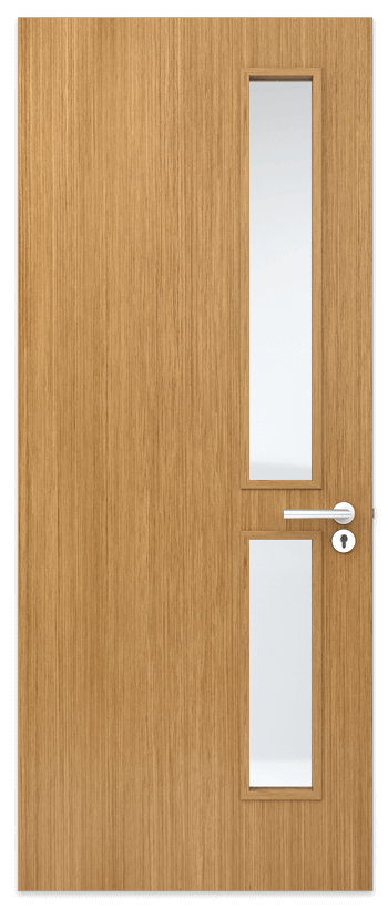 Door panel with 2 vision panels